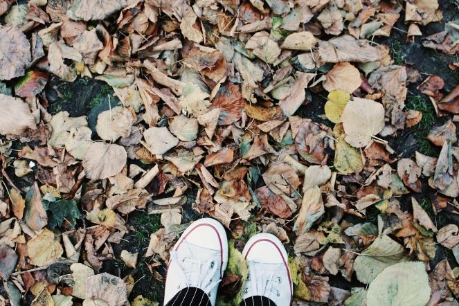 sunny autumnday II